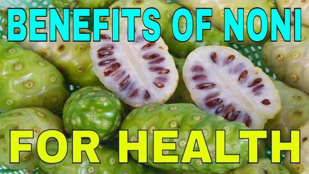 noni juice: nature's cure for cancer and health benefits