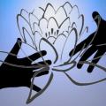 Blooming Lotus Innovations Inc.