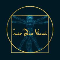 Leo Dis Vinci
