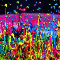 Colorful Chaotic