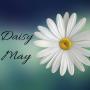 Daisy May