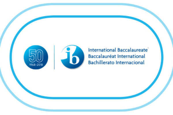 10 Tips to Survive the IB | Education