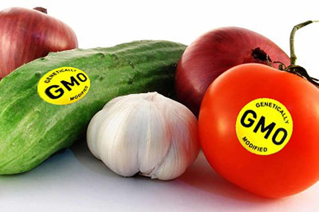 Image result for gmo food