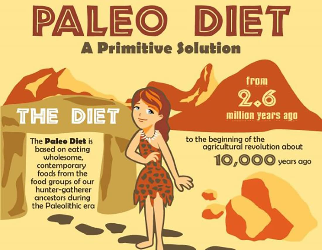 THE PALEO SOLUTION EBOOK DOWNLOAD