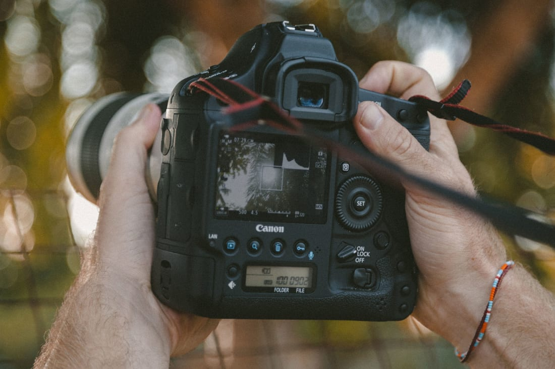 Why You Should Shoot in Raw Instead of JPEG | Photography