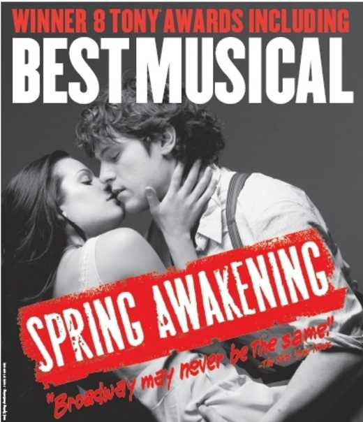 High School Musical, Heathers, Spring Awakening, and Young Broadway