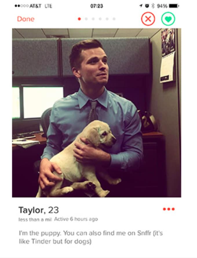 Whats a good tinder bio for a guy