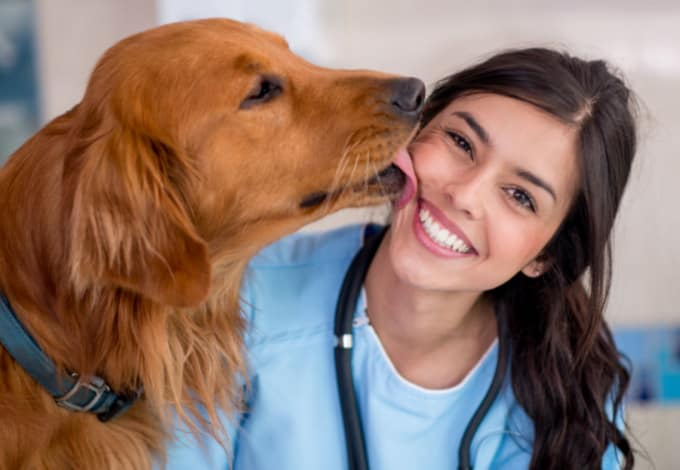 A Day in the Life of a Vet Tech | Petlife