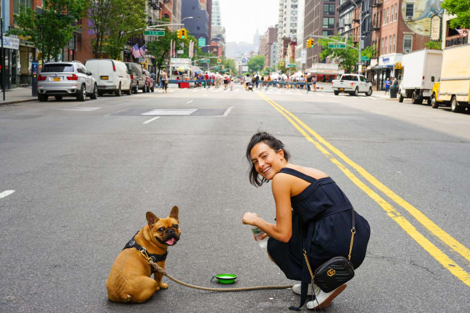 What Makes a Dog the Happiest While Traveling