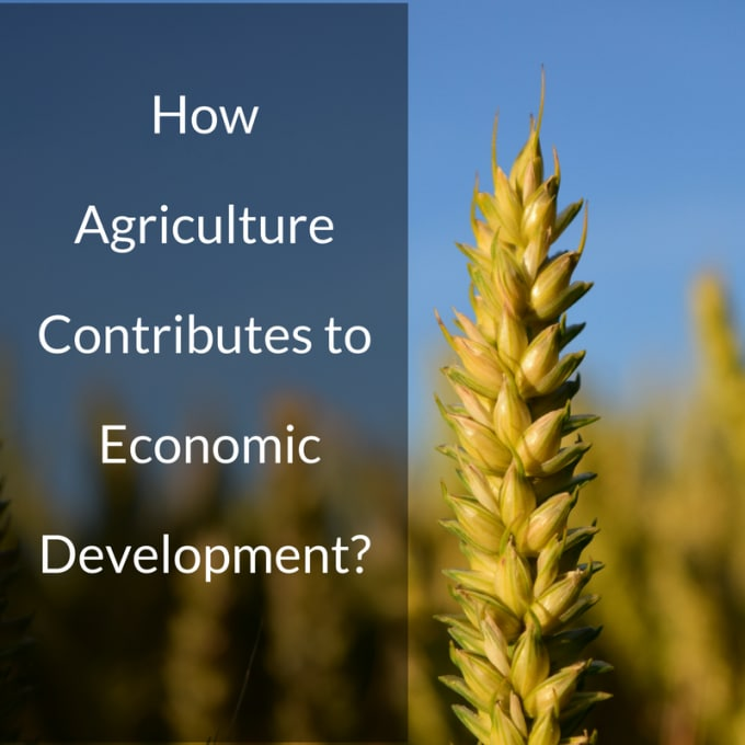 what are the importance of agricultural economics?