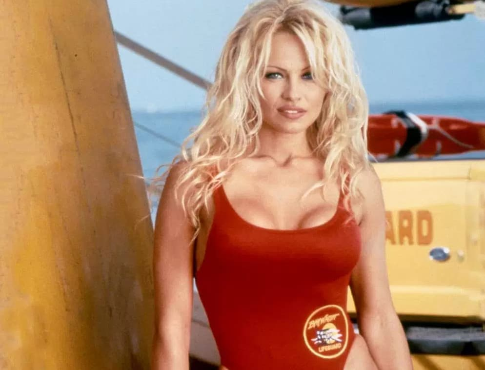 Pamela anderson sex stories
