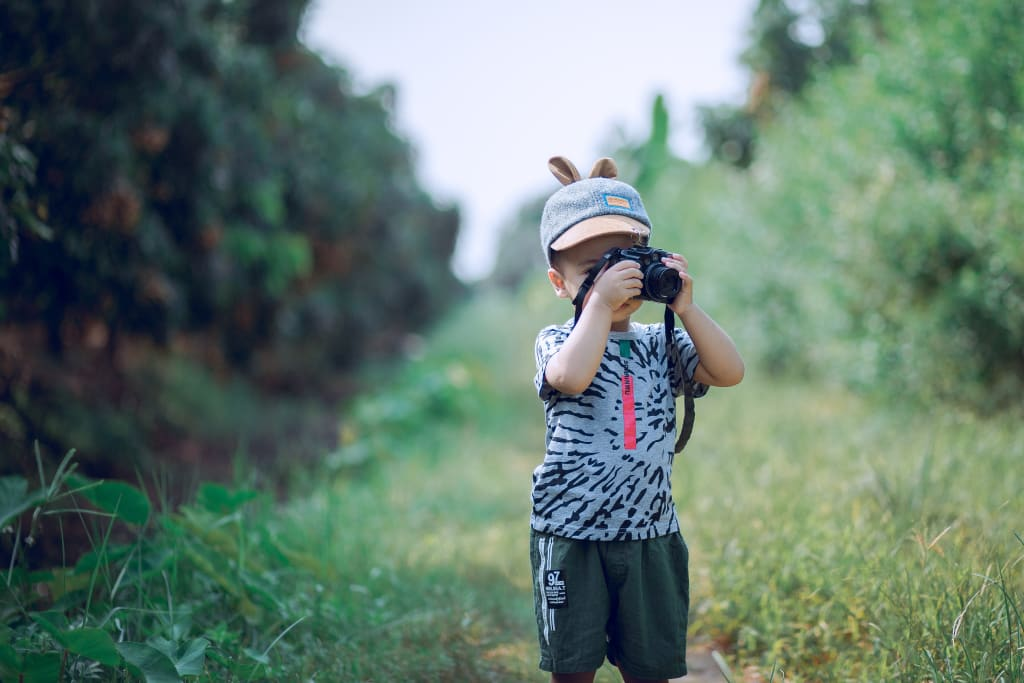 Seven Ways to Teach Children More About the Environment
