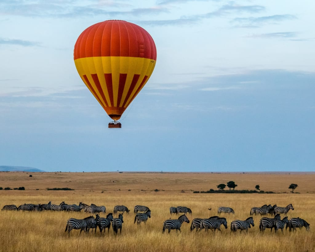 9 Reasons Why You Shouldn't Visit Africa