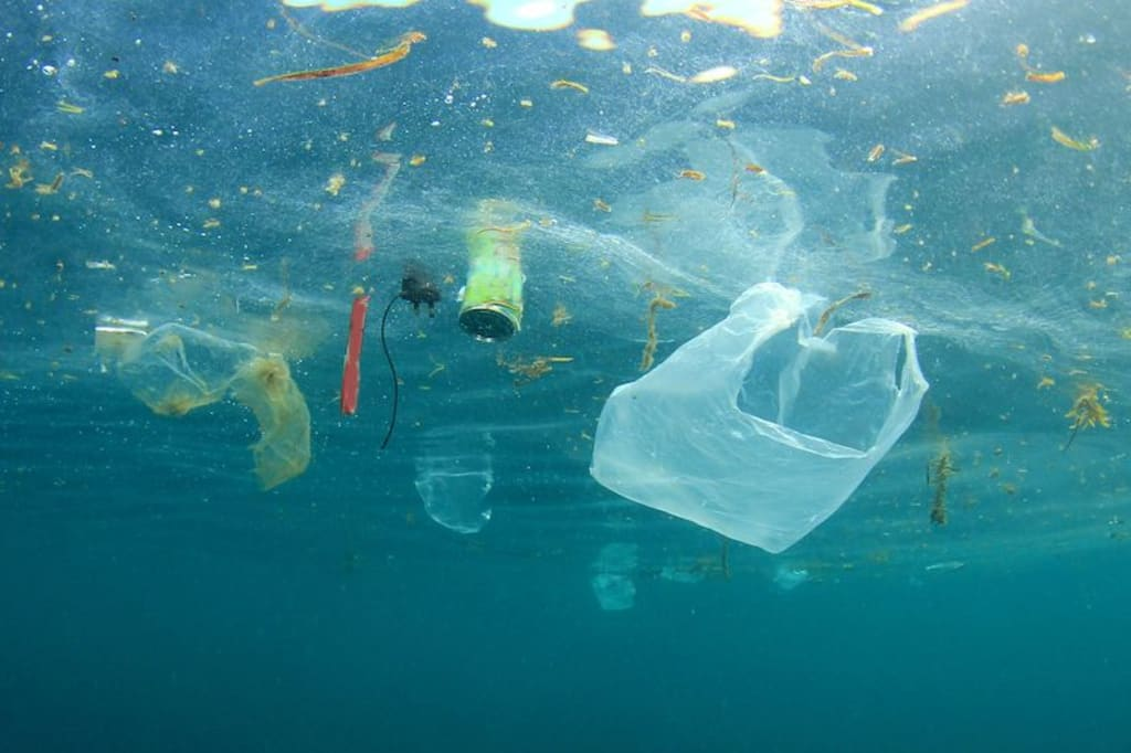 Dare to Say No to Single-Use Plastic