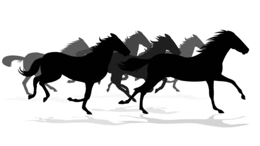 The Breath of Horses