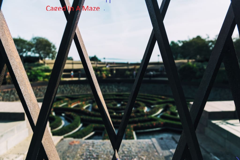 Caged in a Maze