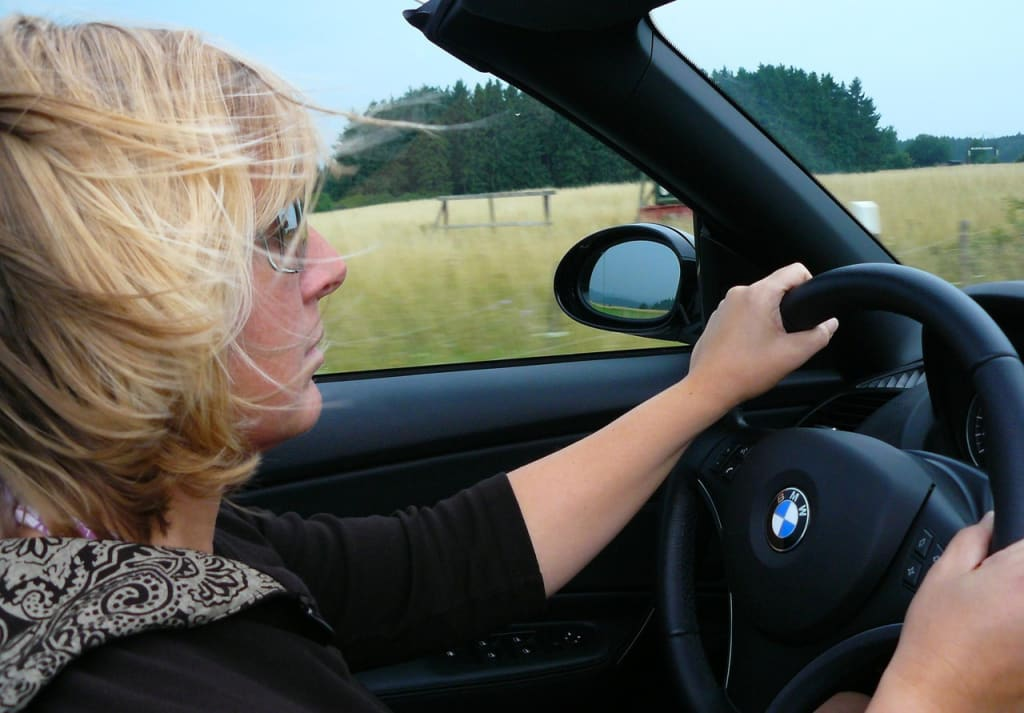 The Roles and Performance of Professional Driving Instructors