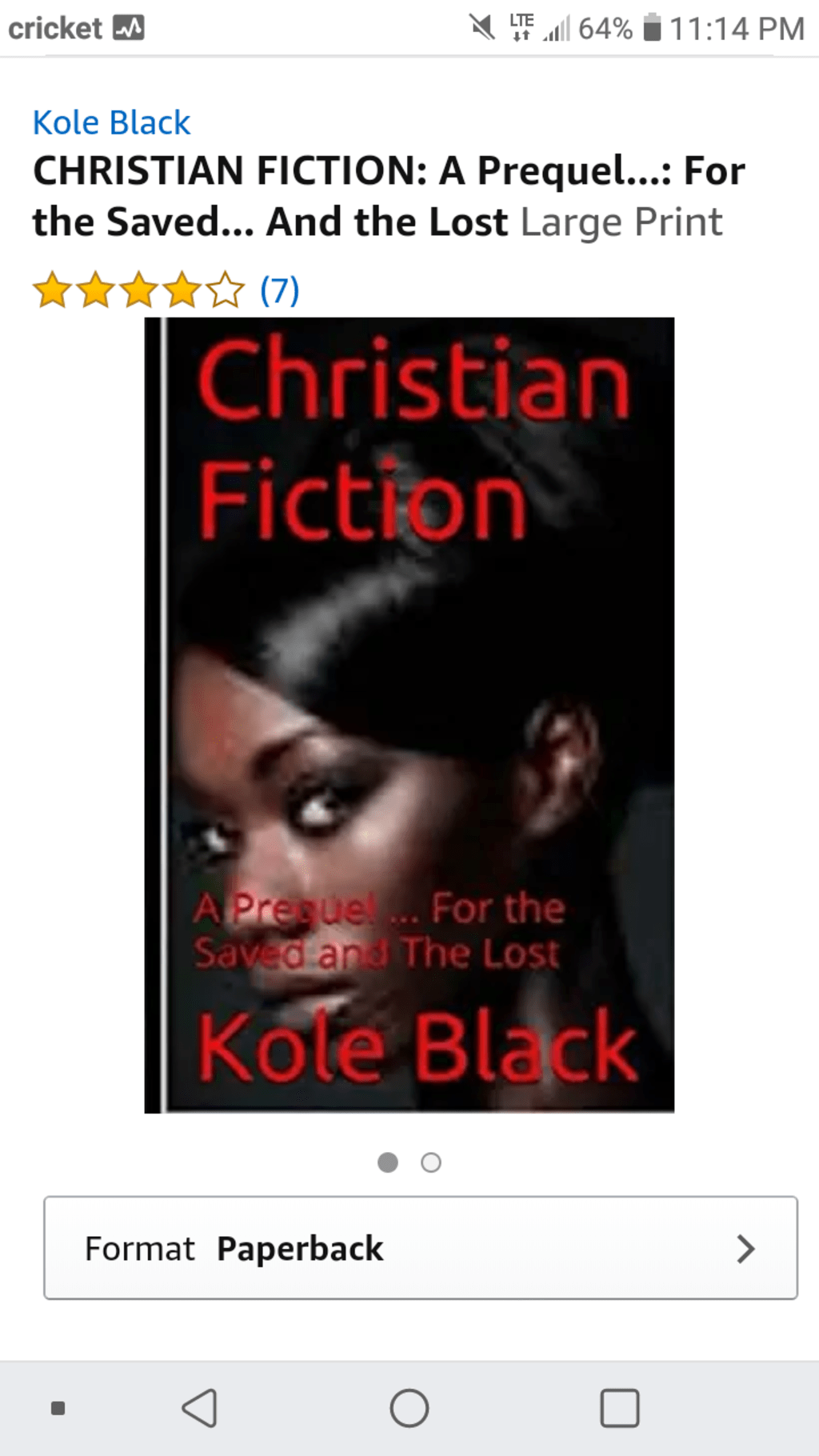 Christian Fiction (Domestic Violence)