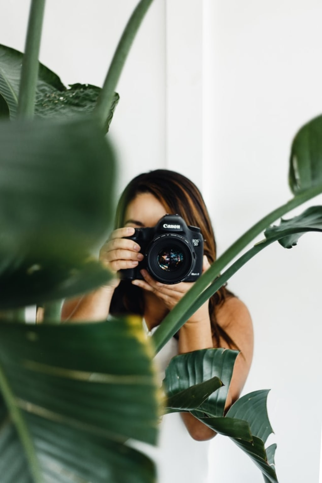 The Best Cameras for Bloggers