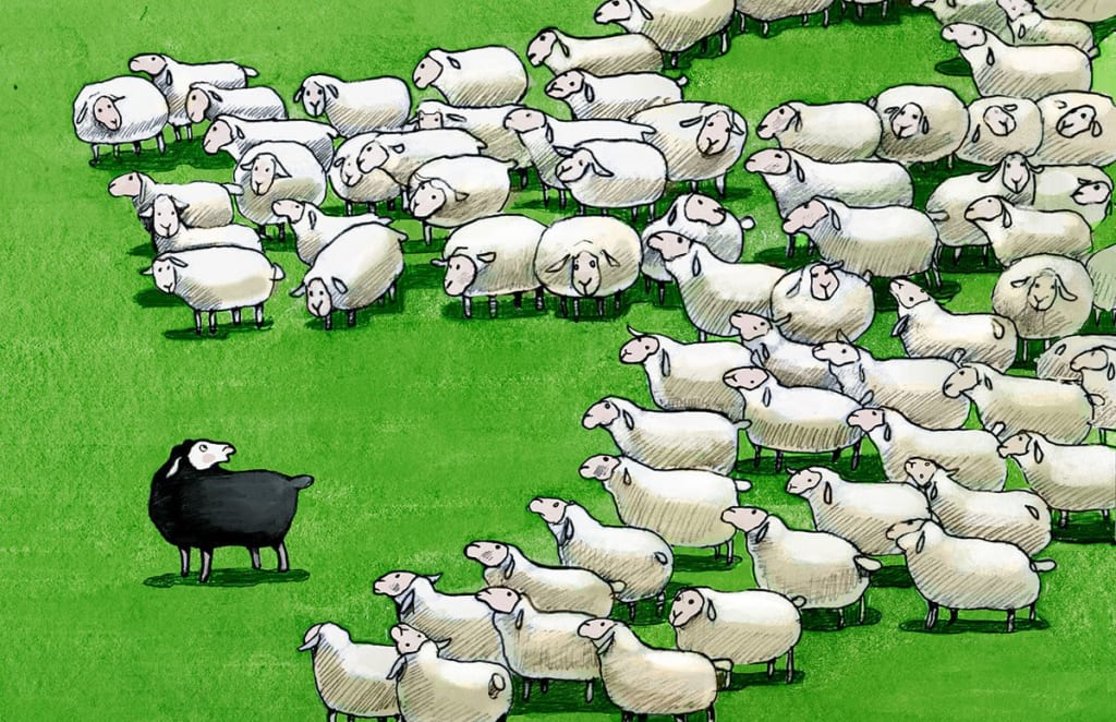 We Are Not Black Sheep