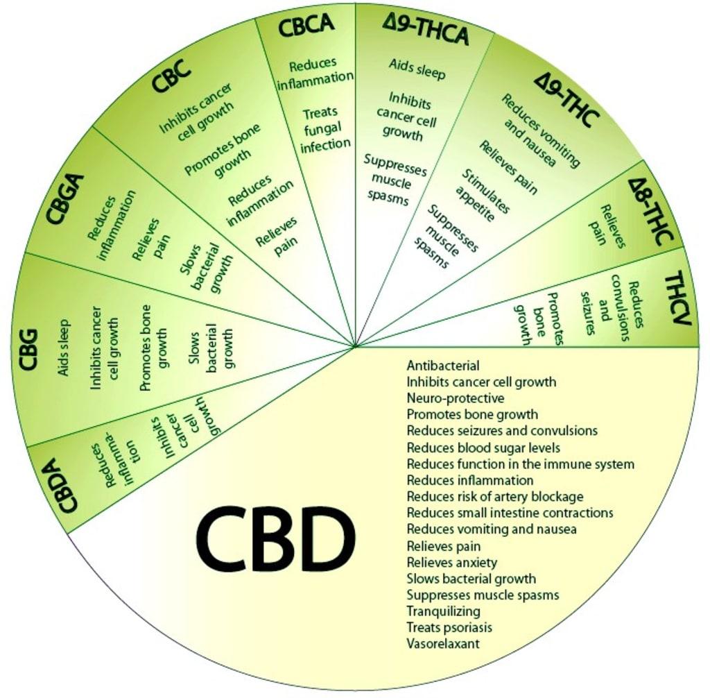 CBD Choices