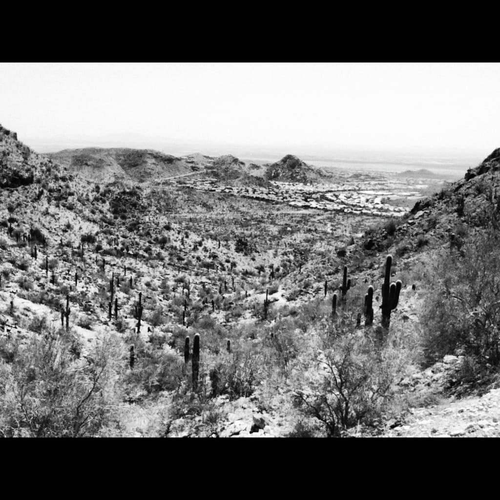 Arizona Voice