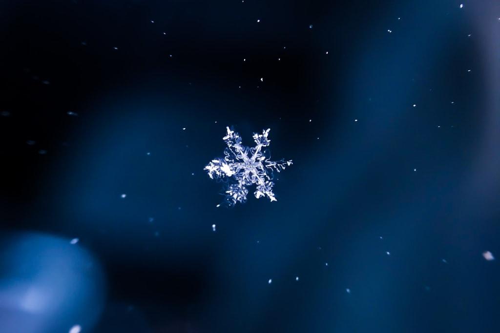 Snowflake & Coconut