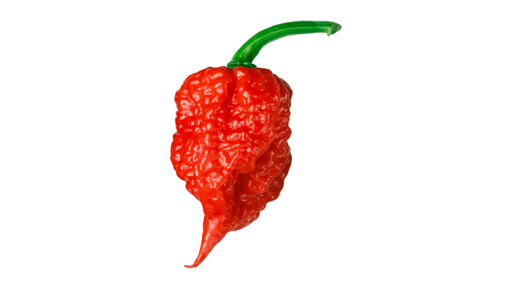 Carolina Reapers & Capsaicin Crystals: The Spiciest Foods I Eat for Fun