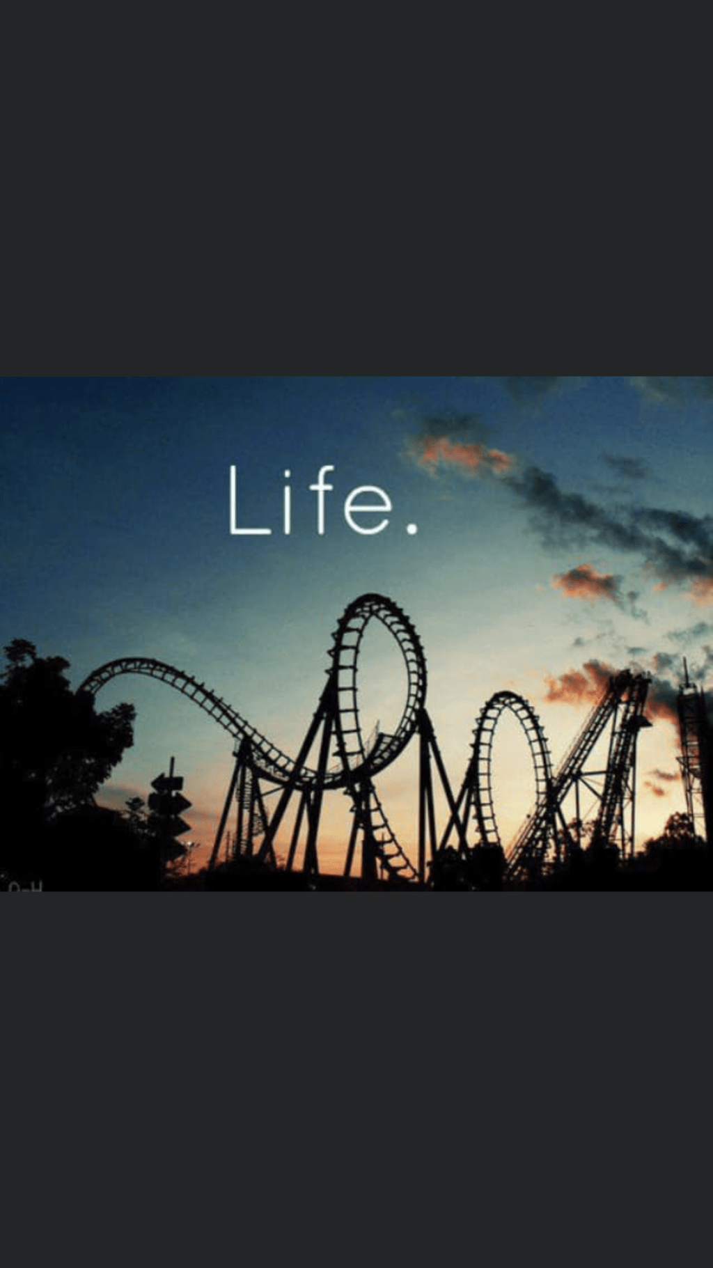 Ride the Rollercoaster