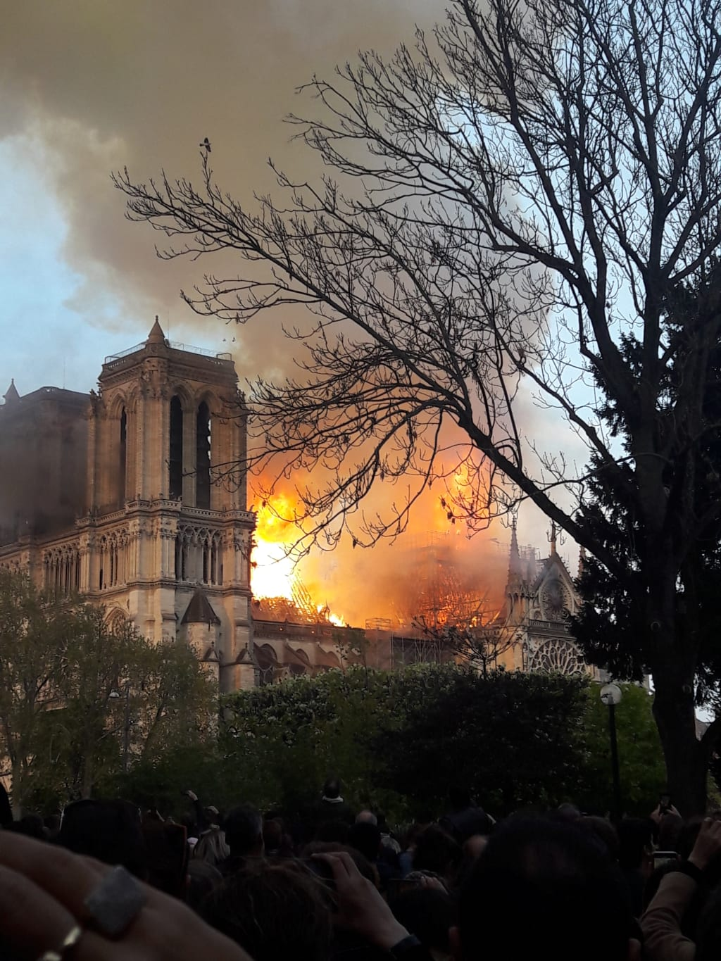 Notre Dame Eye Witness Account