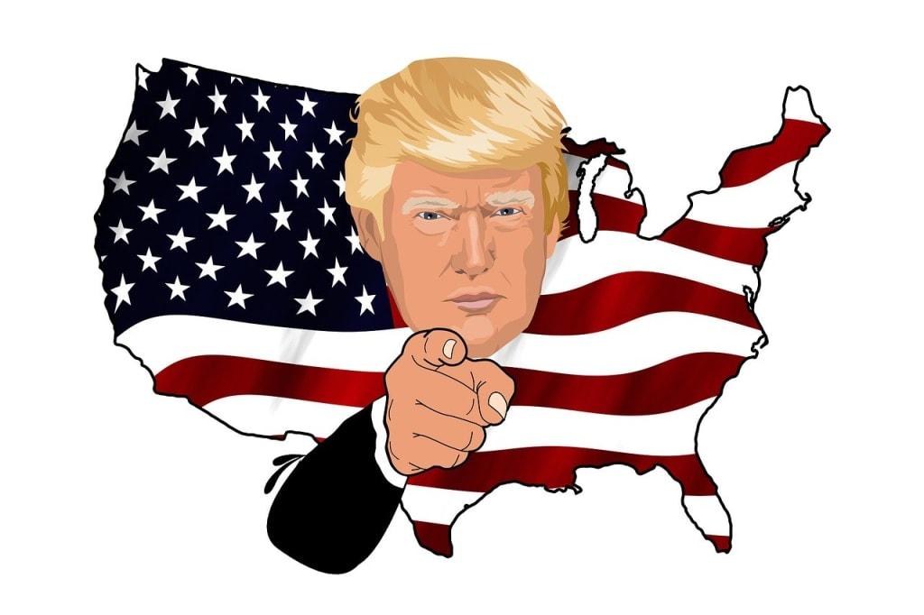 Trump for Dummies