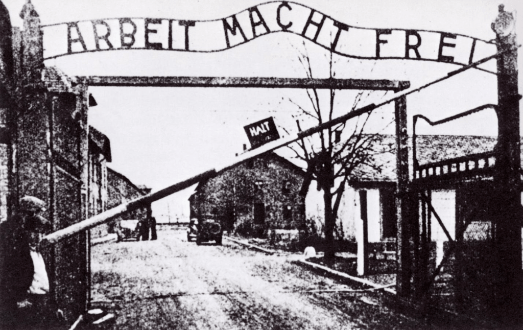 Can and Should Psychology Be Used to Explain the Holocaust.