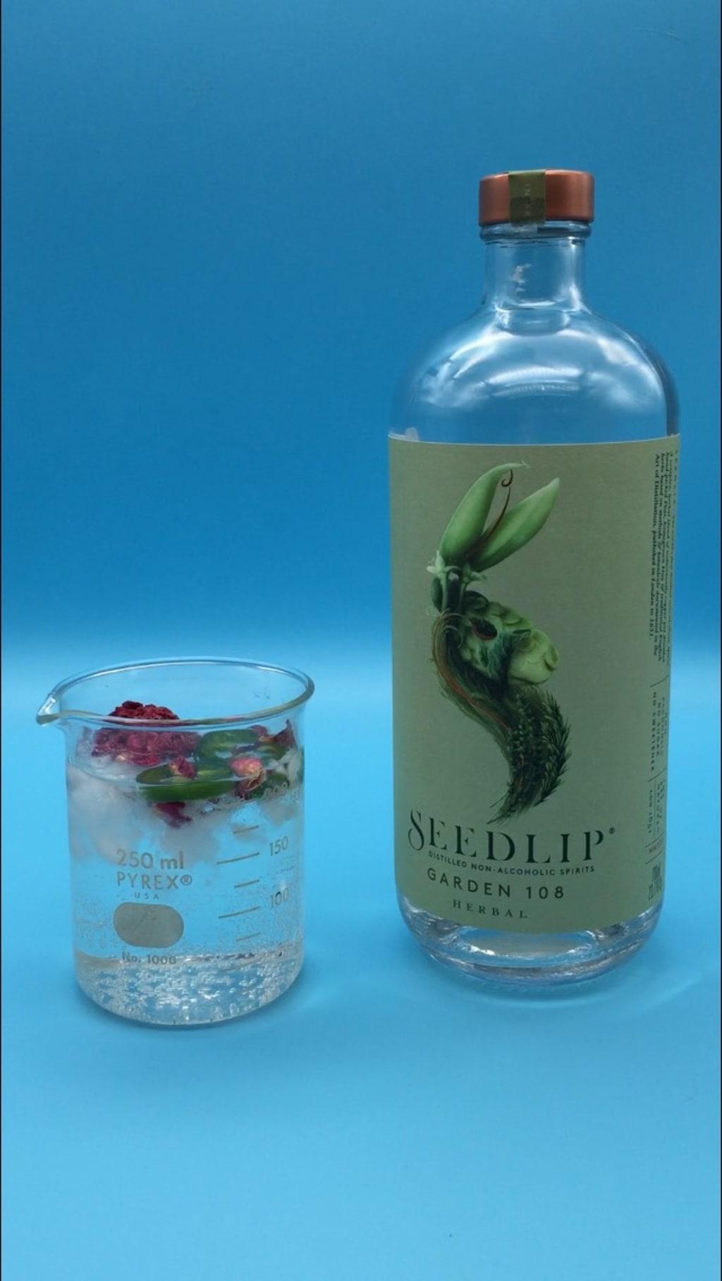 Seedlip Review