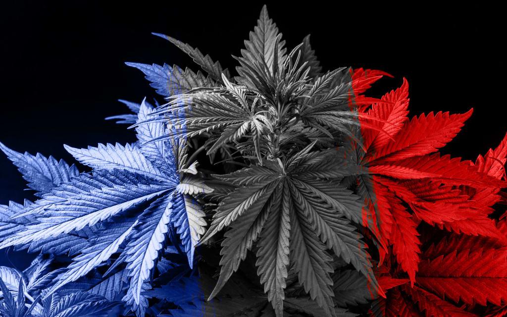 MARIJUANA: BANNED DRUGS ARE ALWAYS EITHER OVERESTIMATED OR UNDERESTIMATED