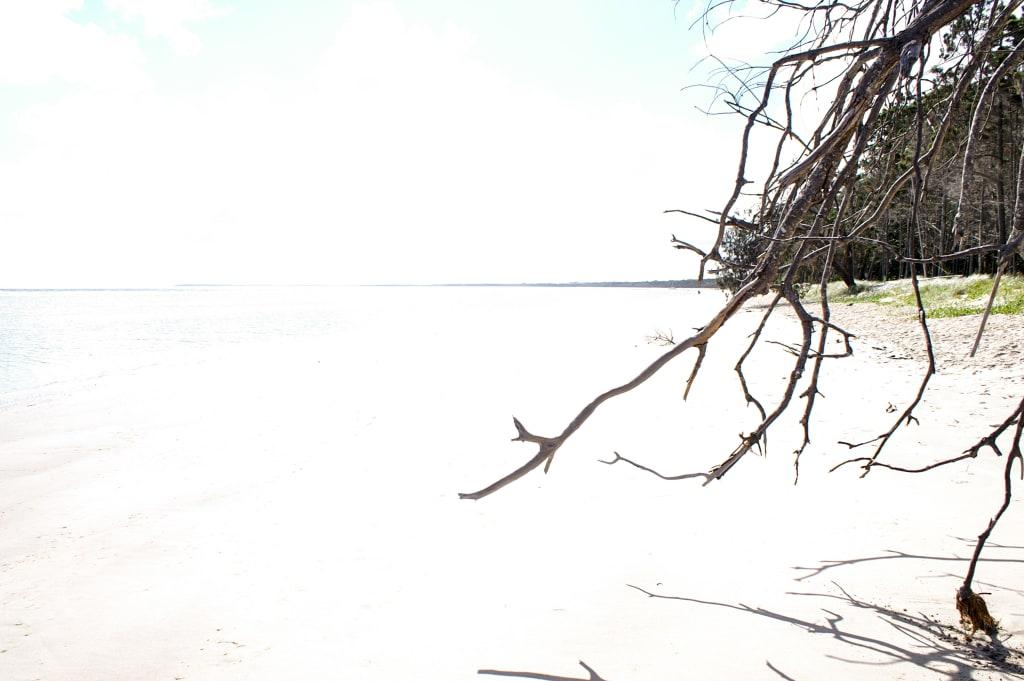 Beach Prayers