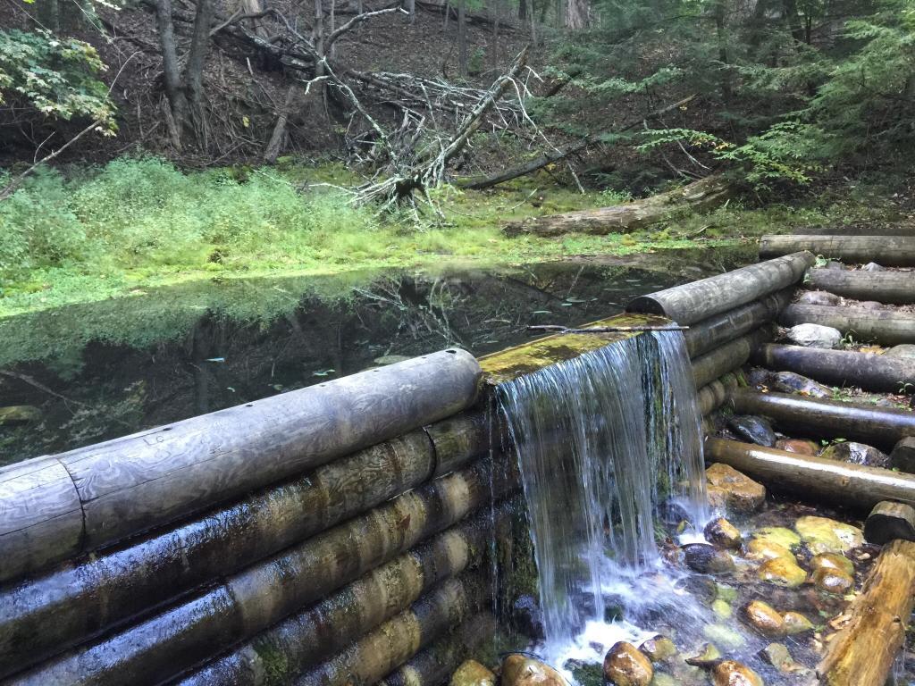 Iargo Springs: Michigan's Hidden Gem