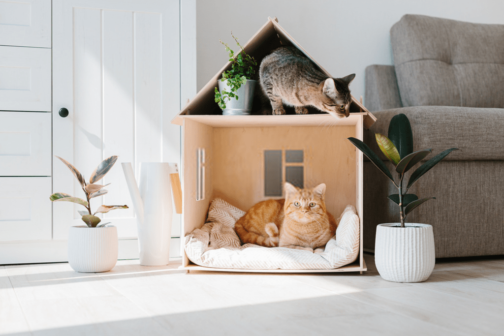 Mind Blowing Ideas With Cardboard For Home Decor