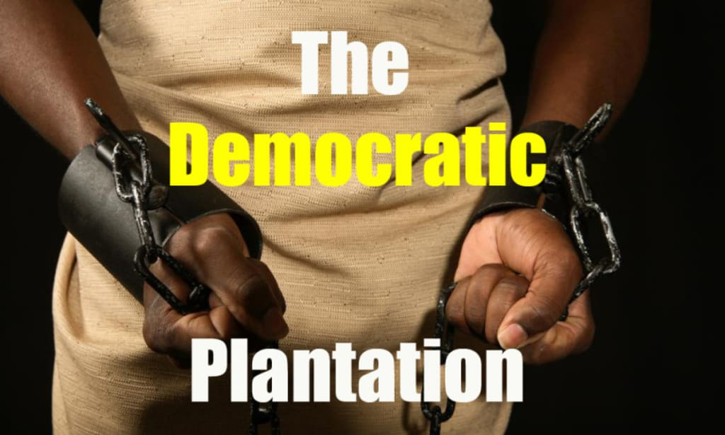 Letter From the Democratic Plantation