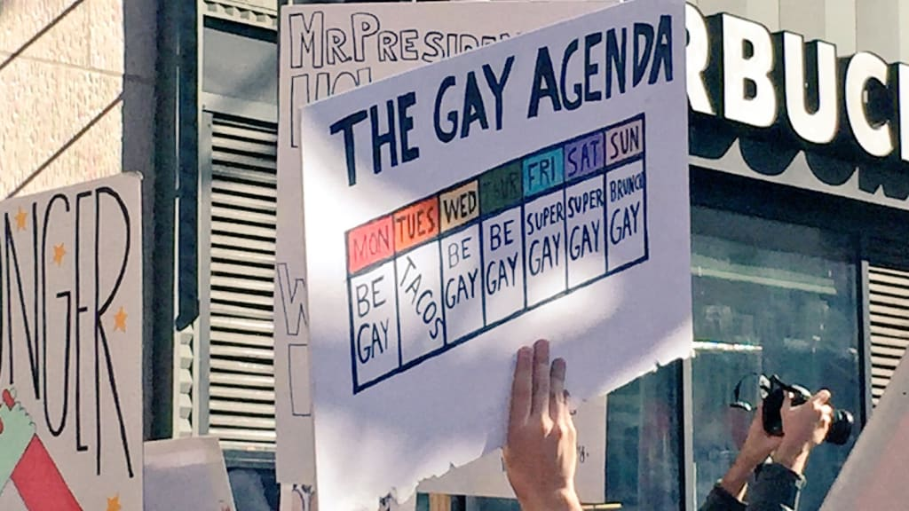 Unpopular Opinion: The Gay Agenda