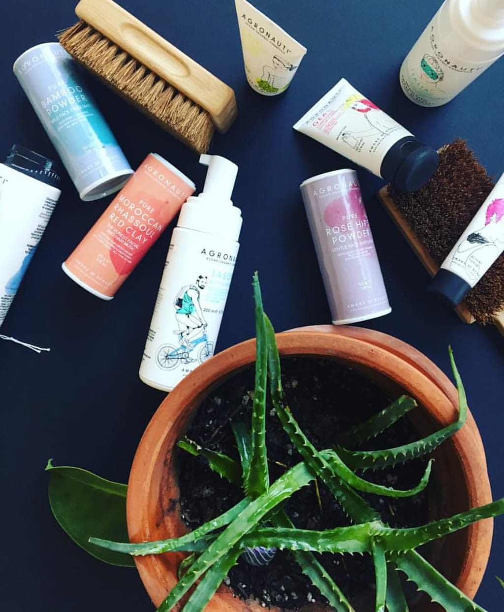 Two BIG Reasons to Use Organic Cosmetics and Why Is It Healthier to Go Organic? Food, Skincare, and More