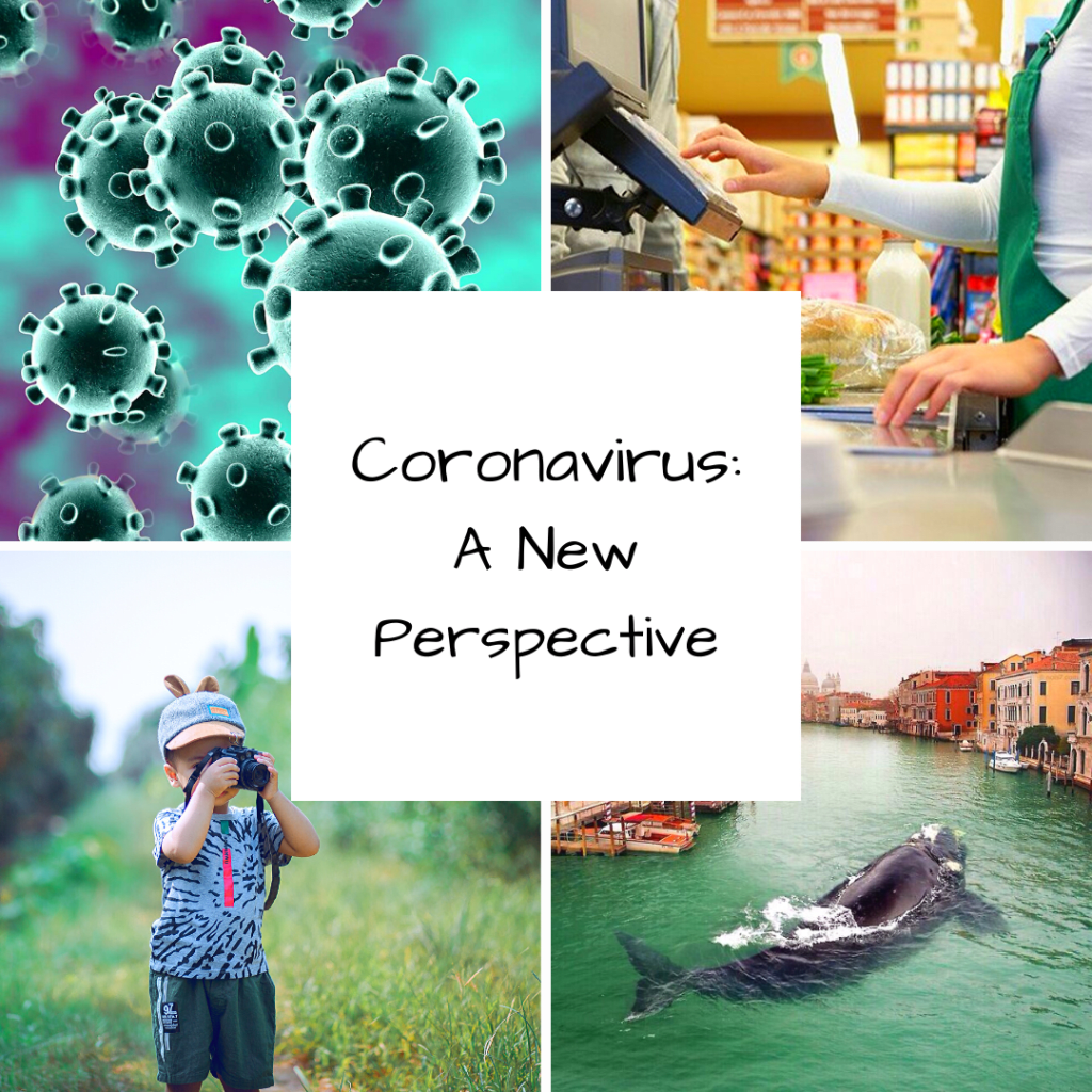 Coronavirus: A New Perspective