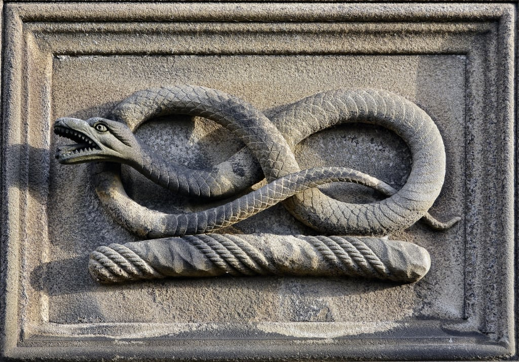 The Serpent and The Gascon's Dinner Bill