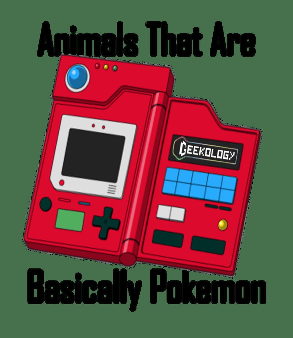 5 Animals That Are Basically Pokémon