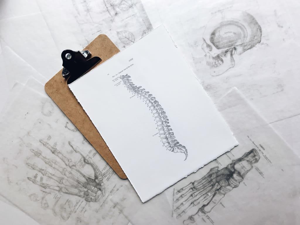 7 Easy Exercises for Lower Back Pain