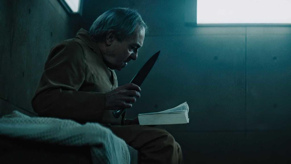 Gruesome movie 'Platform' review