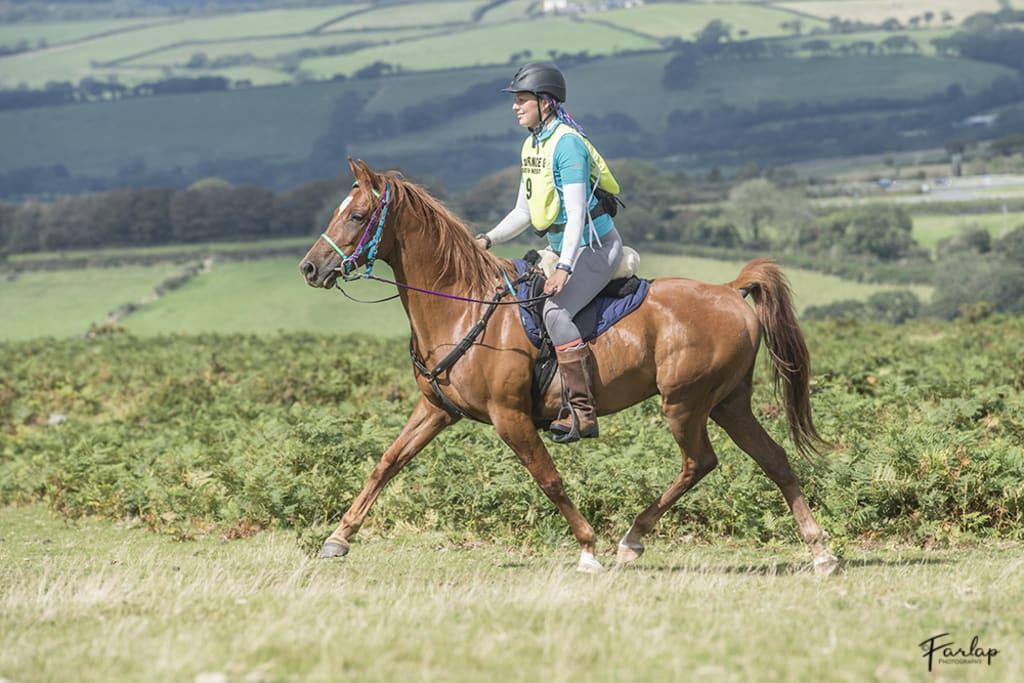 The Dartmoor Ride