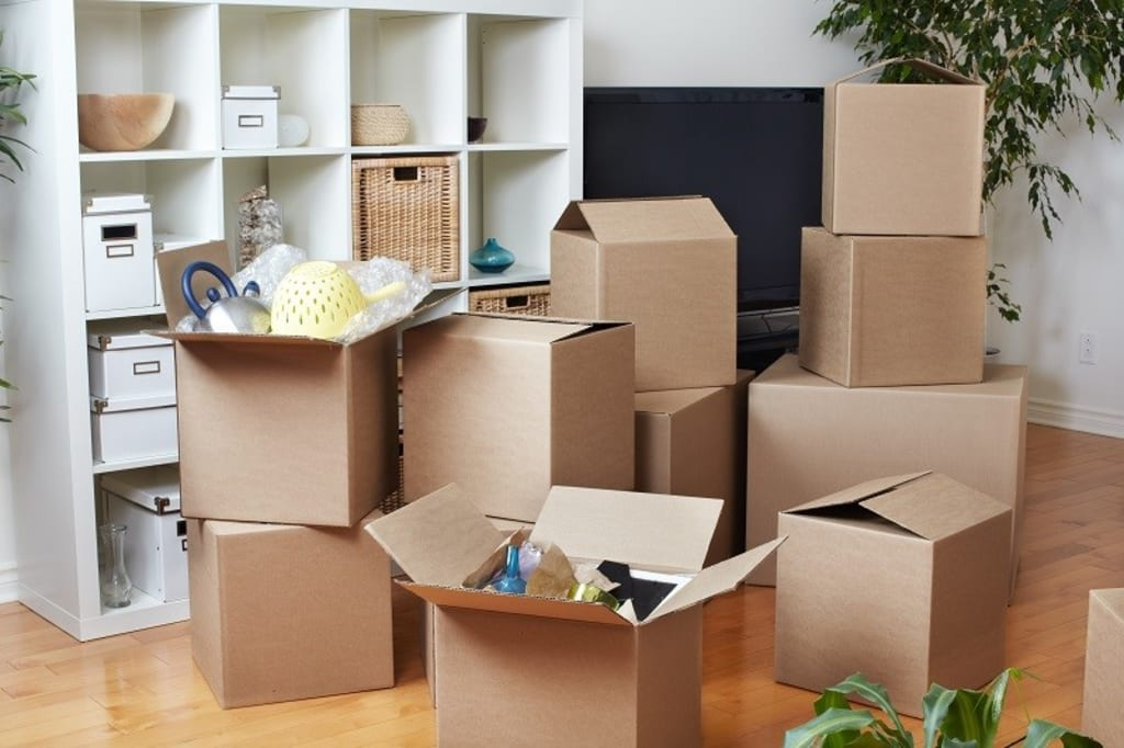 Essential Questions to Ask Your Removalists