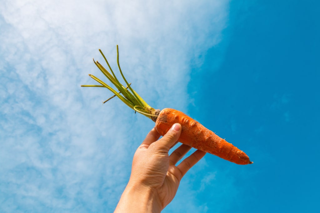 Why you'll never crave a carrot. (but you could always eat a pizza).
