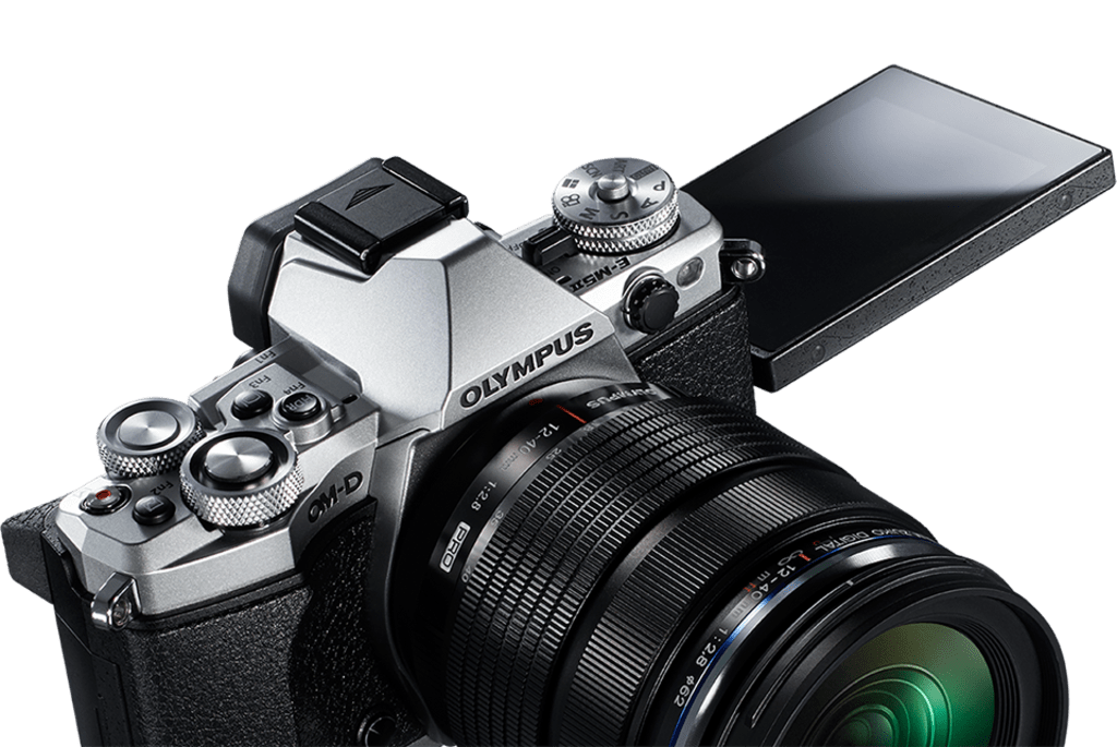 The 5 Best Mirrorless Cameras for Amateur Photographers