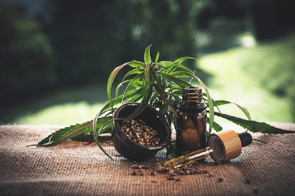 5 Things To Consider When You Want To Buy The Best CBD Oil